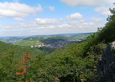 Aussicht vom Felsen Bresgenruh