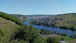 Ausblick auf Neumagen-Dhorn