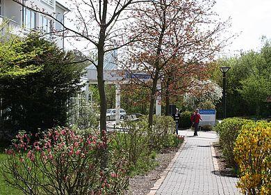 Hoch über der romantischen Moselweinstadt Bernkastel-Kues liegen in dem heilklimatischen Kurort Kueser Plateau die MEDIAN Rehakliniken.